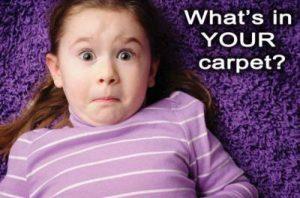carpet-allergens