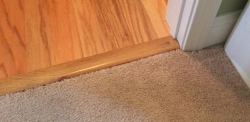 Pet Damage Carpet Repair After